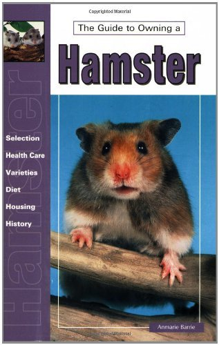 Anmarie Barrie Guide To Owning A Hamster