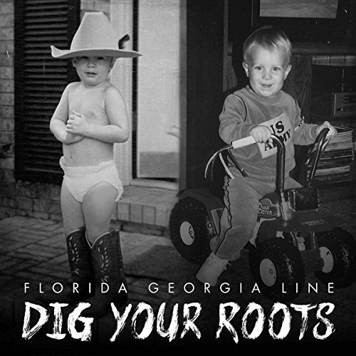 Florida Georgia Line Dig Your Roots 2 Lp