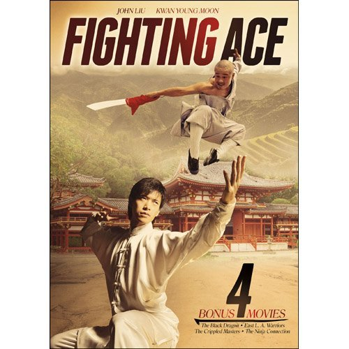 Fighting Ace Fighting Ace