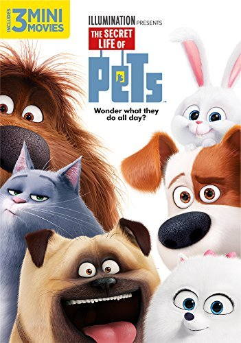 Secret Life Of Pets Secret Life Of Pets DVD Pg