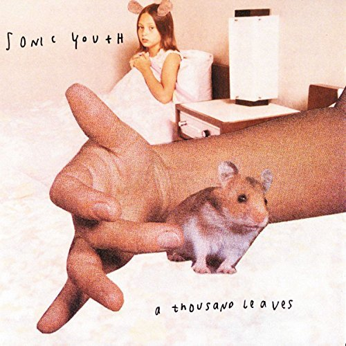 Sonic Youth Thousand Leaves