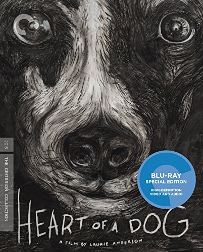 Heart Of A Dog Laurie Anderson Blu Ray Criterion