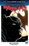 Tom King Batman Vol. 1 I Am Gotham (rebirth)
