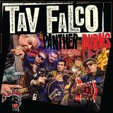 Tav Falco Panther Burns Sway B W Where The Rio De Rosa Flows Purple Vinyl Black Friday Exclusive