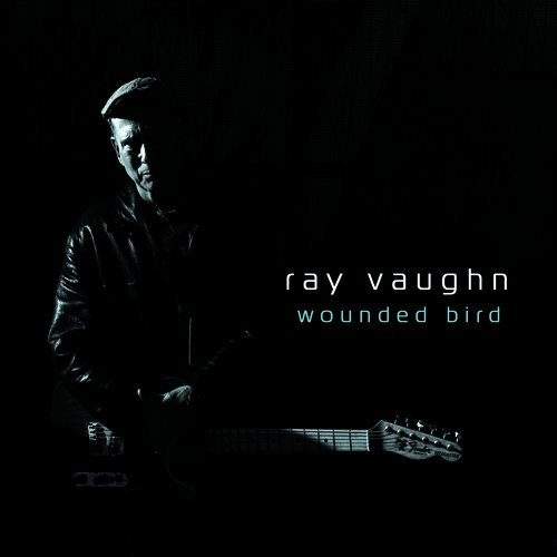 Ray Vaughn Wounded Bird