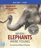 When Elephants Were Young When Elephants Were Young Blu Ray Nr