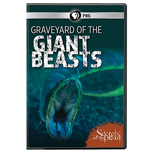 Secrets Of The Dead Graveyard Of The Giant Beasts Pbs DVD Nr