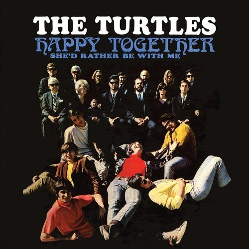 Turtles Happy Together