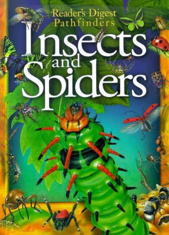 Matthew Robertson Insects & Spiders