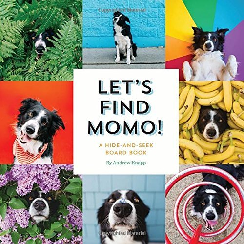 Andrew Knapp Let's Find Momo! A Hide And Seek Board Book