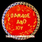 Jesus & Mary Chain Damage And Joy