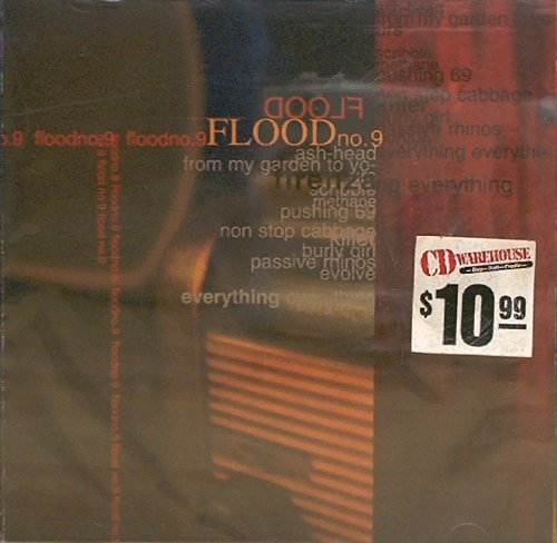 Flood No.9 Firenza