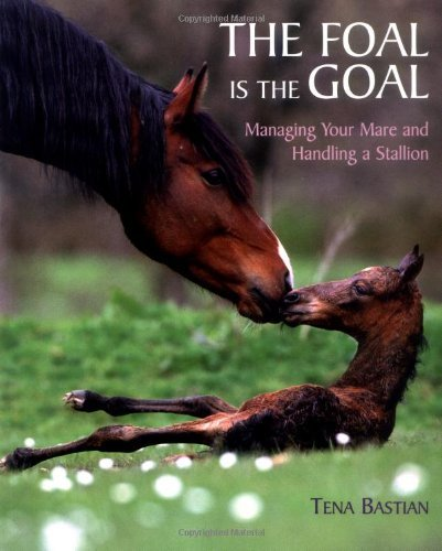 Tena Bastian Foal Is The Goal The Managing Your Mare And Handling A Stallion