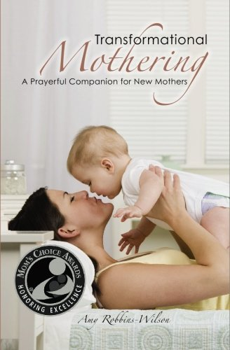 Amy Robbins Wilson Transformational Mothering A Prayerful Companion For New Mothers