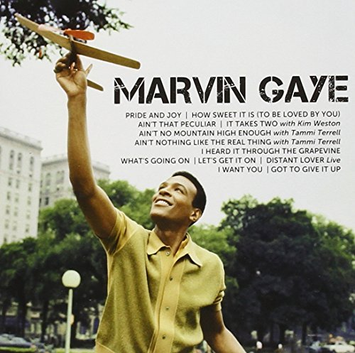Marvin Gaye Icon