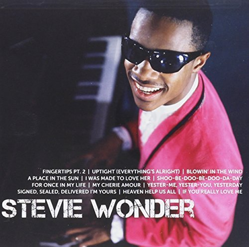 Stevie Wonder Icon