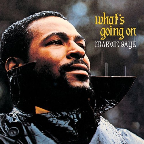 Marvin Gaye What's Going On 2 CD Lp Deluxe Ed.