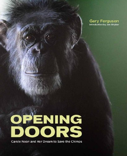 Gary Ferguson Opening Doors Carole Noon And Her Dream To Save The Chimps