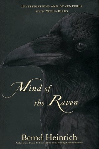 Bernd Heinrich Mind Of The Raven Investigations And Adventures W