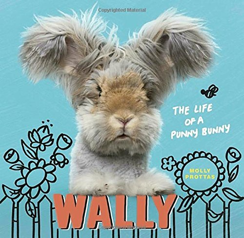 Molly Prottas Wally The Life Of A Punny Bunny