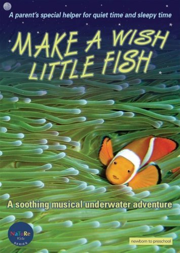 Make A Wish Little Fish Make A Wish Little Fish