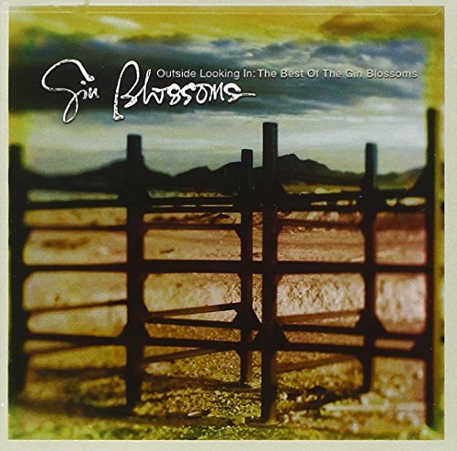 Gin Blossoms Outside Looking In Best Of Gin