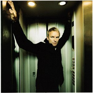 Sting Brand New Day Feat. Mami Taylor Wonder Ste'