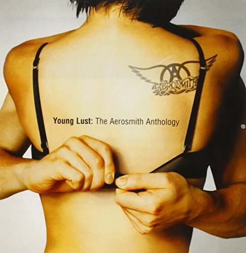 Aerosmith Young Lust Aerosmith Anthology 2 CD Set