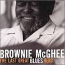 Mcghee Brownie Last Great Blues Hero