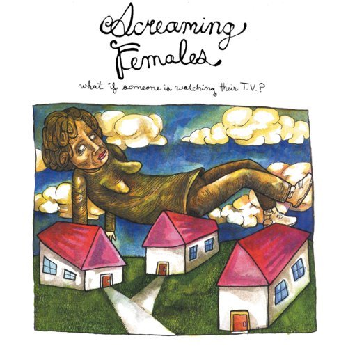 Screaming Females What If Someone Is Watching Th Digipak