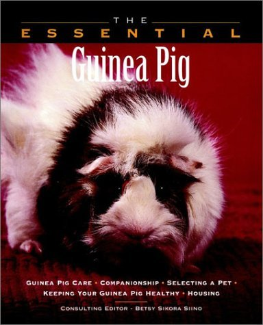 Betsy Sikora Siino Essential Guinea Pig The