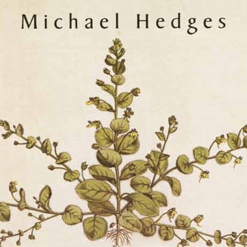 Michael Hedges Taproot