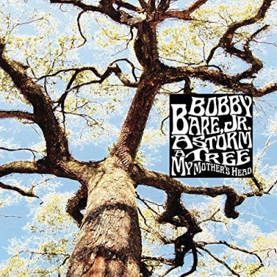 Bobby Bare Jr. Storm A Tree My Mother's Head