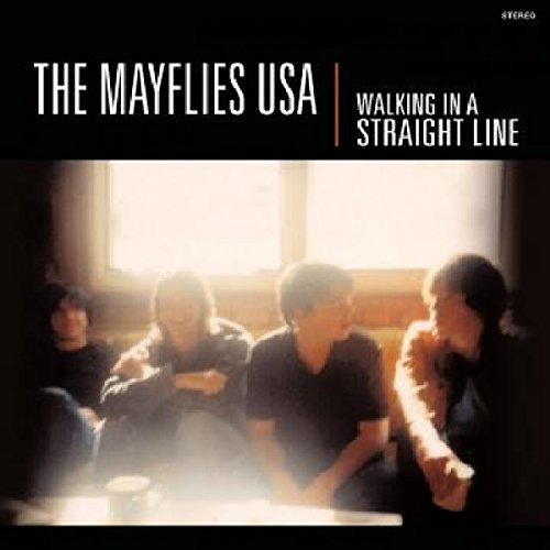 Mayflies Usa Walking In A Straight Line