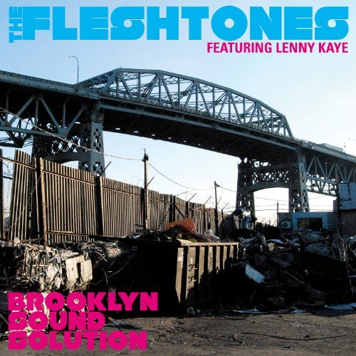 Fleshtones Brooklyn Sound Solution