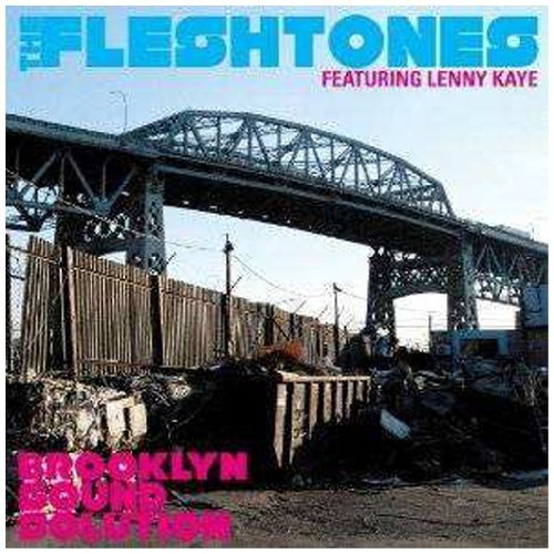 Fleshtones Brooklyn Sound Solution Digipak