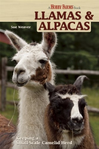 Sue Weaver Llamas And Alpacas Small Scale Herding For Pleasure And Profit