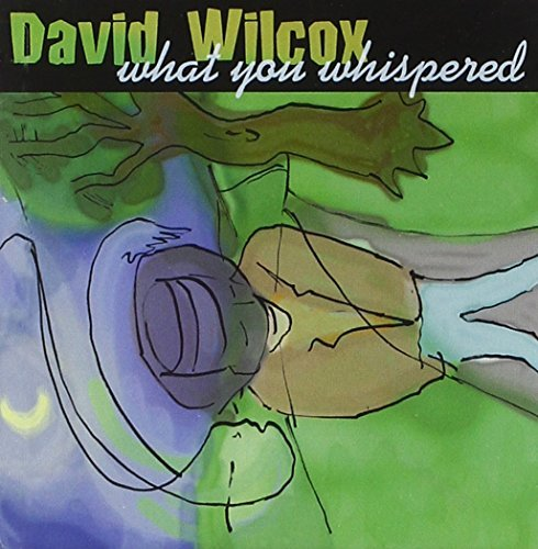 David Wilcox What You Whispered