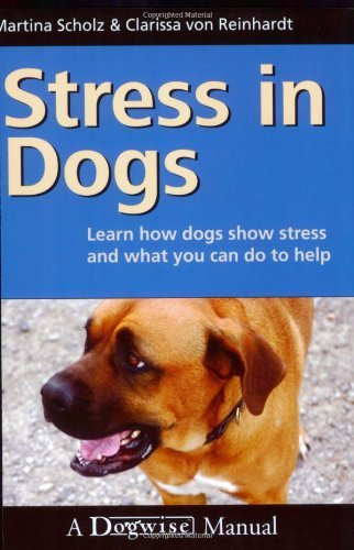 Martina Scholz Stress In Dogs Learn How Dogs Show Stress And What You Can Do To