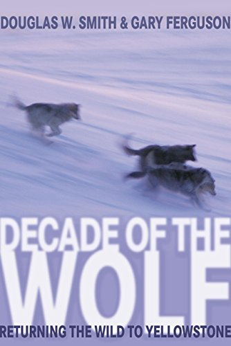 Douglas Smith Decade Of The Wolf Returning The Wild To Yellowstone