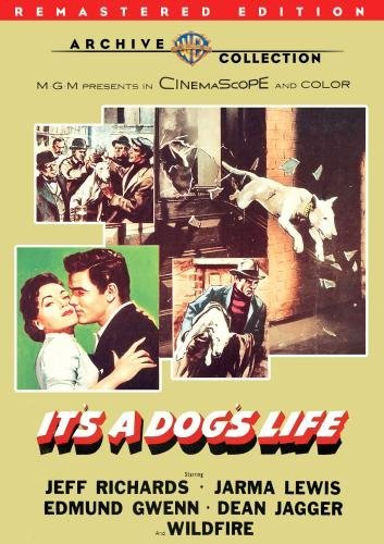 It's A Dog's Life (remastered) Richards Lewis Gwenn DVD Mod This Item Is Made On Demand Could Take 2 3 Weeks For Delivery