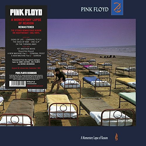 Pink Floyd Momentary Lapse Of Reason
