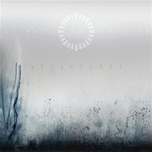 Animals As Leaders Weightless