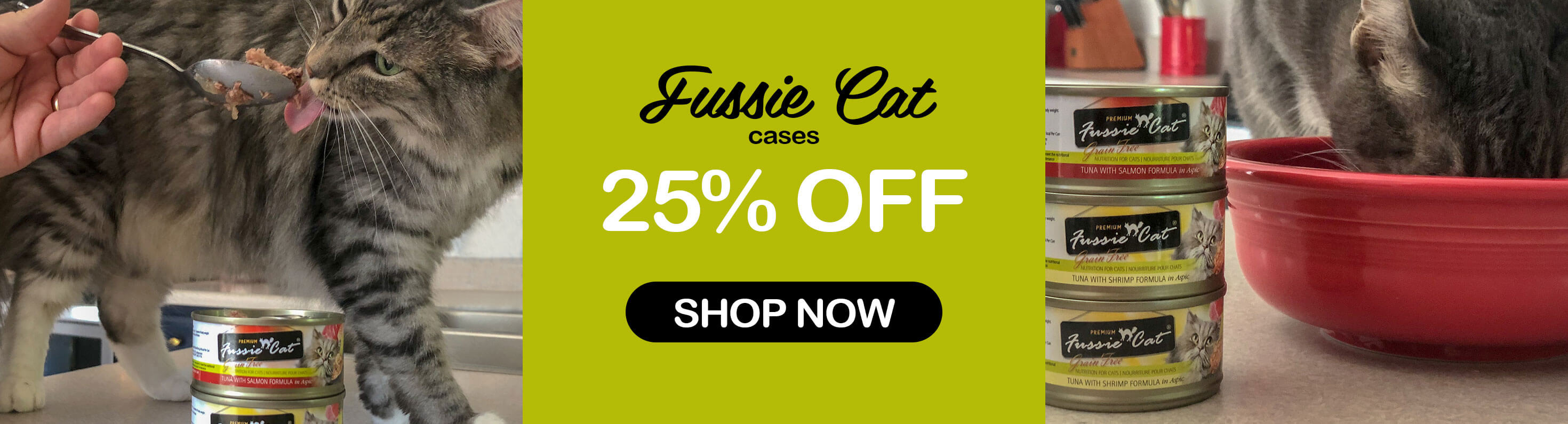 Fussie Cat Cases