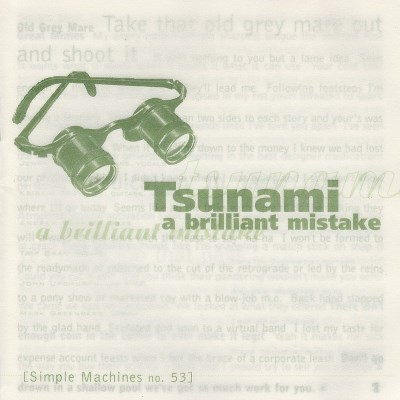 tsunami-a-brilliant-mistake