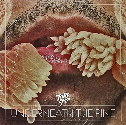 Toro Y Moi Underneath The Pine