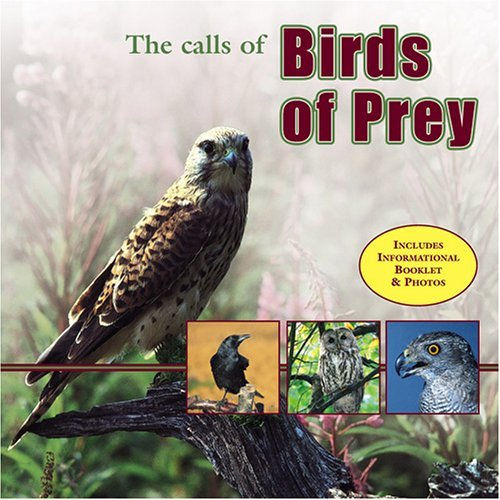 Calls Of Birds Of Prey Calls Of Birds Of Prey
