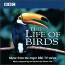Life Of Birds Tv Soundtrack Music By Butcher Faux