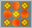 club-delf-as-above-live-at-the-lizard-lo-2-cd-set