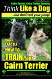 Paul Allen Pearce Cairn Terrier Cairn Terrier Training Think Like Here's Exactly How To Train